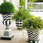 Black and White Planters