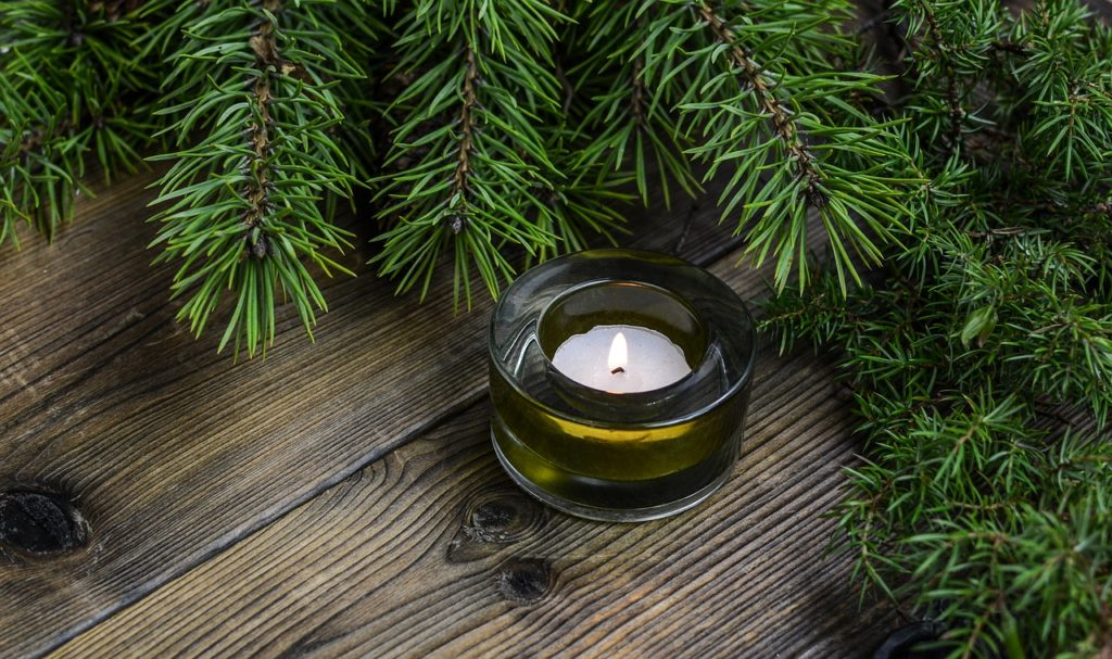 Votive candle in front of an evergreen