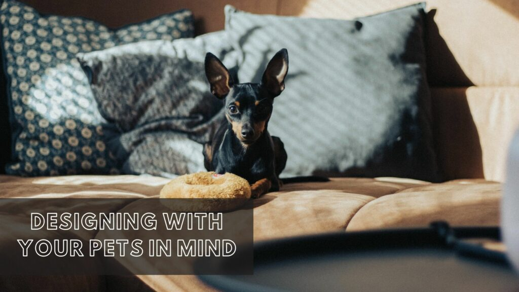 Designing with your pets in mind